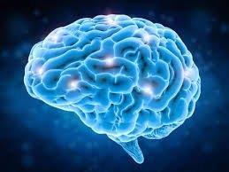 The Positive Effects of CBD In The Brain 1
