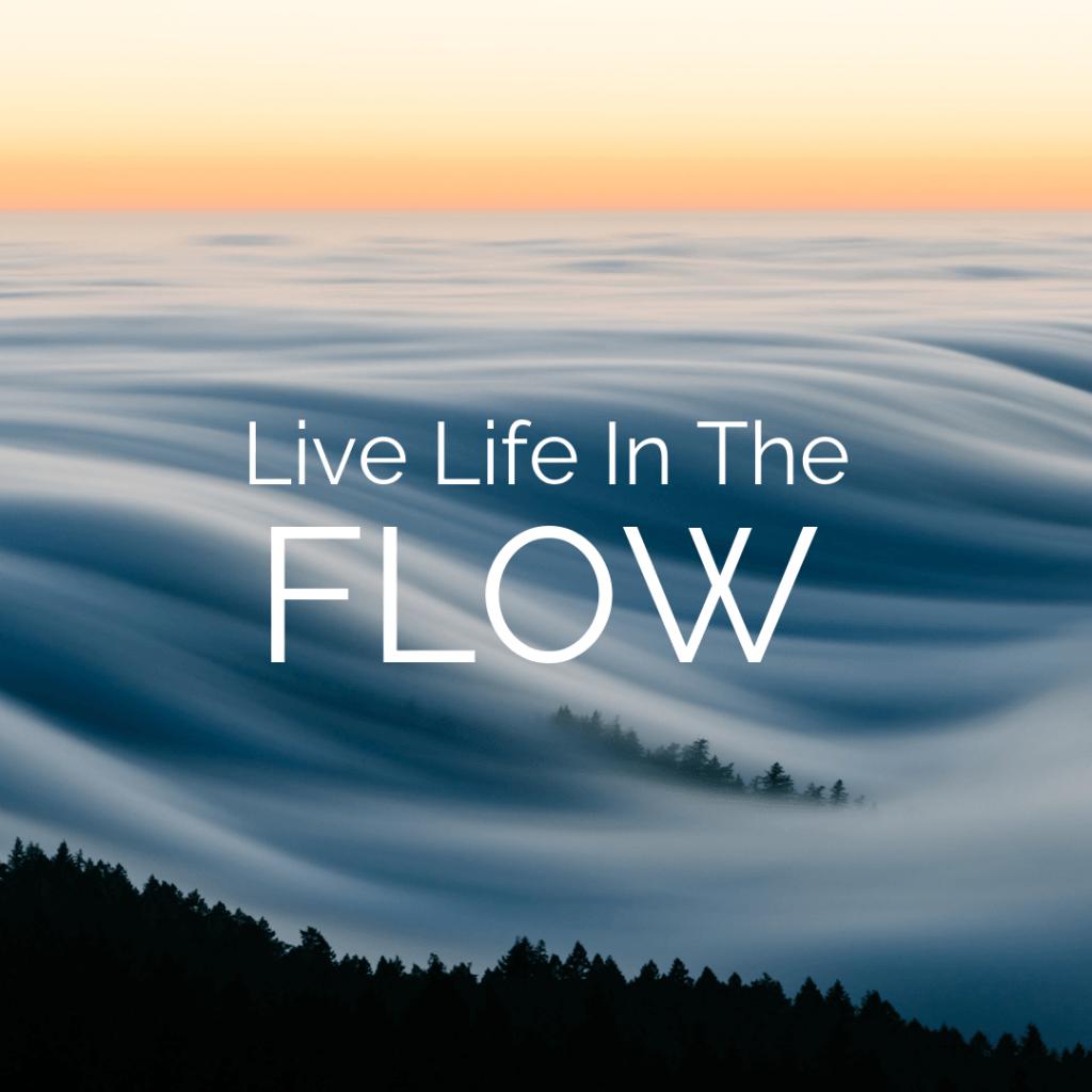 VitaFlow Sport brand slogan Live Life In the Flow